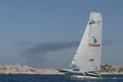 Sailing - Geant Trimaran Royalty Free Stock Image