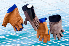 Free Sailing Glove Hanging On The Nets . Stock Photography - 57077532