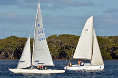 Sailing in Gold Coast Queensland Australia Royalty Free Stock Photography