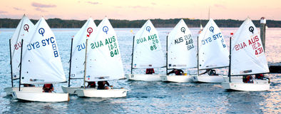 Sailing in Gold Coast Queensland Australia Royalty Free Stock Photo