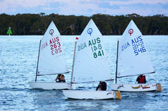 Sailing in Gold Coast Queensland Australia Royalty Free Stock Image