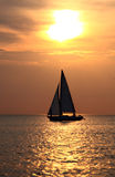 Sailing in the golden sea Stock Photos