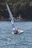 Sailing on the Harbour. A small sail boat racing on Sydney Harbour Stock Photo