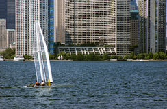 Sailing on the lake front. Sailing on the Toronto lake front Stock Photography