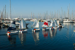 Sailing lessons on optimist Royalty Free Stock Images
