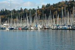 Sailing Marina Stock Images