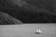 Sailing in Marlborough Sounds Royalty Free Stock Image