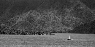 Sailing in Marlborough Sounds Stock Image