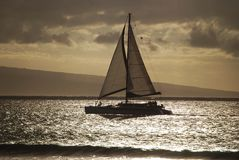 Sailing in Maui Royalty Free Stock Image