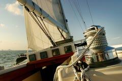 sailing miami s biscayne залива стоковое фото rf
