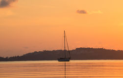 Sailing in the morning. This is a photo of  sailing in the morning Stock Image