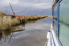 Sailing in the natural oasis of Lake Massaciuccoli, Lucca, Italy stock image