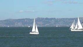 Sailing near San Francisco stock video