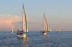 Sailing off into the sunset. Several sailboats begin an evening race on Charlotte Harbor Florida Royalty Free Stock Images