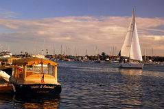 Sailing on a perfect day royalty free stock images