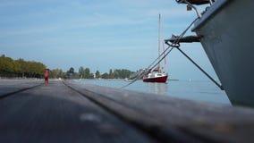 Sailing stock video