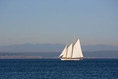 Sailing in Puget Sound. Schooner Sailboat sailing in Puget Sound off the tip of Port Townsend Bay Stock Images