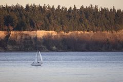 Sailing on Puget Sound at Sunset. A lone sailboat plies the waters of Puget Sound in the Tacoma Narrows at sunset Stock Photography