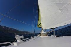 Sailing race along the mountainous coast Royalty Free Stock Photo