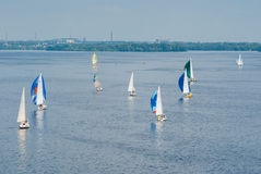Sailing race on the Dnepr river Royalty Free Stock Photography