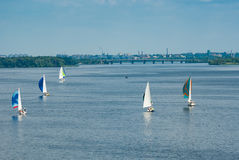 Sailing race on the Dnepr river Royalty Free Stock Image