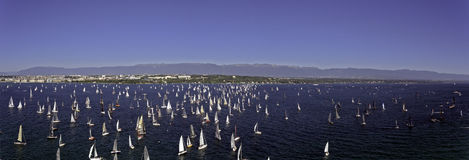 Sailing Race on Lake Geneva in Switzerland Royalty Free Stock Image