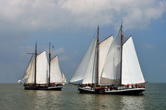 Sailing race on lake ijsselmeer, the Netherlands Royalty Free Stock Photography