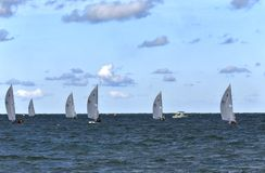 Sailing race on the open water Royalty Free Stock Image