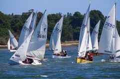 Sailing race at River Orwell, England Stock Photography