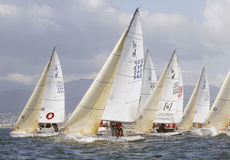 Sailing race 021 Stock Images