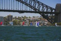 Sailing race under the Sydney Harbour Bridge Royalty Free Stock Images