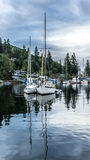 Sailing-Raining morning at Maderia Park Stock Image