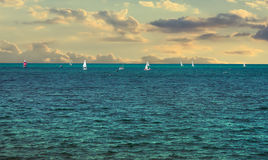 Sailing regatta Stock Image