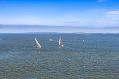 Sailing regatta in Bay of Helsinki, Finland Royalty Free Stock Images