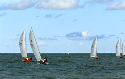 Sailing regatta championship event Stock Image