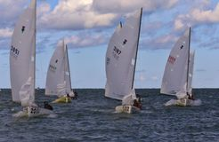 Sailing regatta championship Royalty Free Stock Image