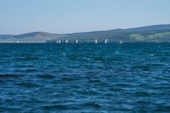 Sailing regatta on the lake, against the backdrop of the mountains. Lake Large is located in the foothills of the Kuznetsk Alatau Stock Photos
