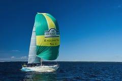 Sailing regatta in Russia Royalty Free Stock Photo