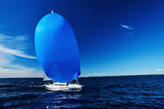 Sailing regatta in Russia Stock Photos