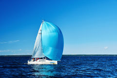 Sailing regatta in Russia Stock Image