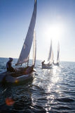Sailing Regatta Royalty Free Stock Photography