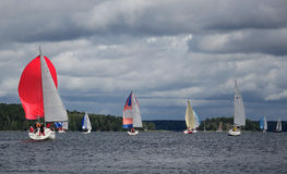 Sailing regatta-winds. Stock Photography