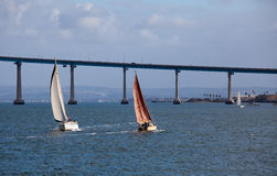 Sailing in San Diego Bay Royalty Free Stock Photo