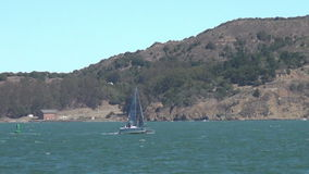 Sailing in the San Francisco Bay stock footage