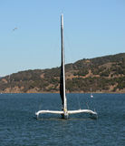Sailing in the San Francisco Bay Royalty Free Stock Photo