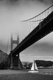Sailing in San Francisco Bay Royalty Free Stock Image