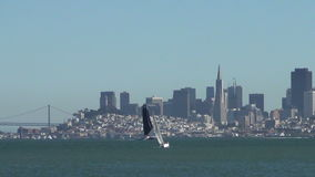 Sailing in the San Francisco bay stock video