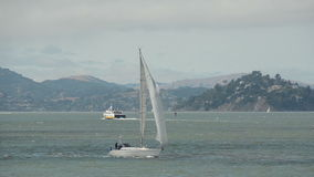 Sailing in San Francisco stock footage