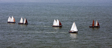 Sailing on sea. Sailboats sailing in flotilla on the sea Royalty Free Stock Photo