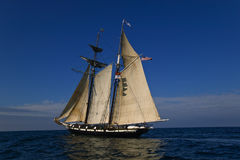Sailing at sea under full sail Royalty Free Stock Photo